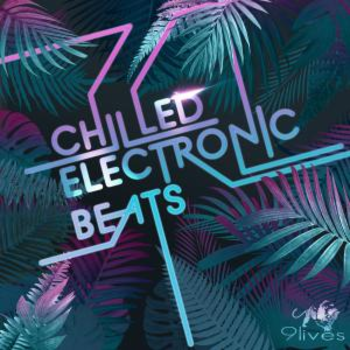Chilled Electronic Beats