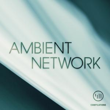 Ambient Network