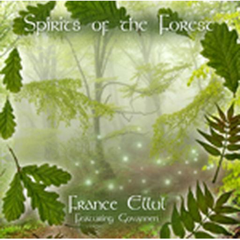 Sprits Of The Forest