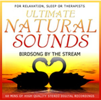 Ultimate Natural Sounds Birdsong By The Stream