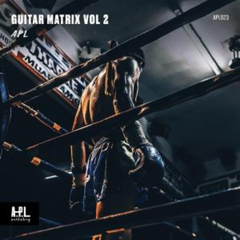 APL 023 Guitar Matrix Vol 2