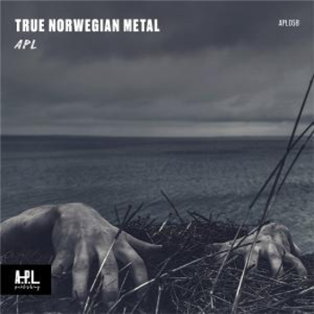 APL 058 Hard Rock Norwegian Metal
