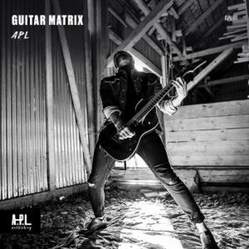 APL 111 Guitar Matrix