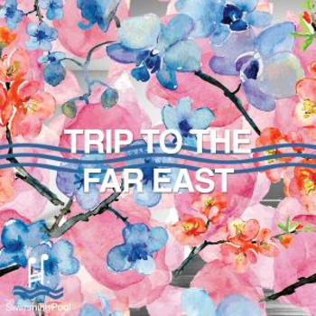 Trip To Far East
