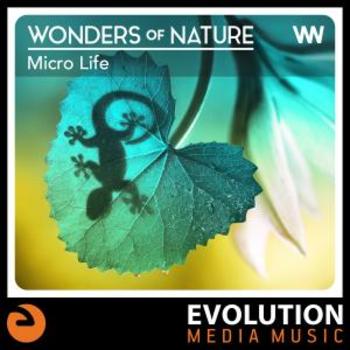 Wonders Of Nature: Micro Life