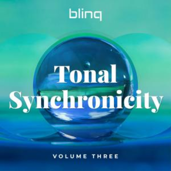 blinq 095  Tonal Synchronicity vol.3