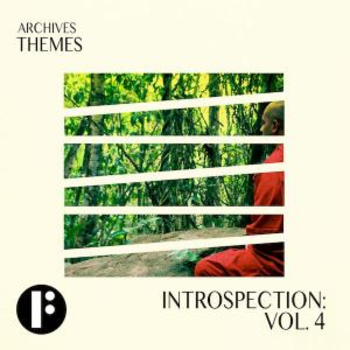 Introspection Vol 4