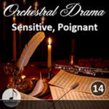 Orchestral 14 Sensetive, Poignant