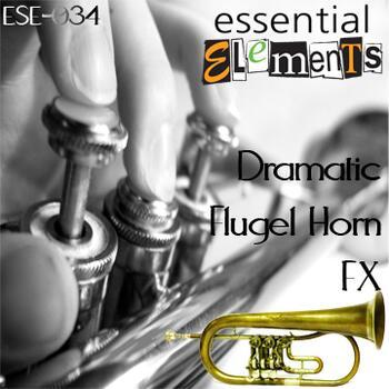 Dramatic Flugel Horn FX