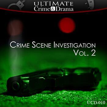 Crime Scene Investigation Vol. 2