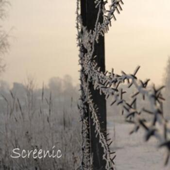Screenic