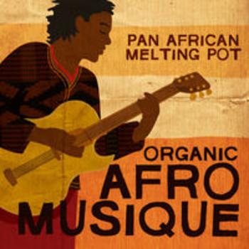 AFRO 46 - ORGANIC AFRO MUSIQUE: A PAN AFRICAN MELTING POT