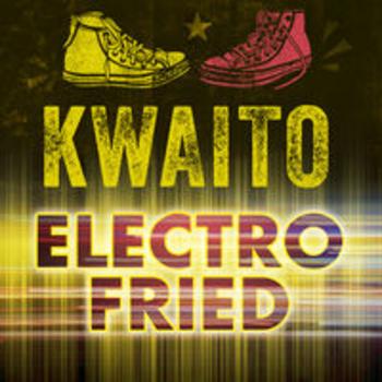 AFRO 55 - KWAITO ELECTROFRIED