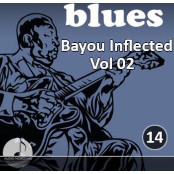 Blues 14 Bayou Inflected Vol 02