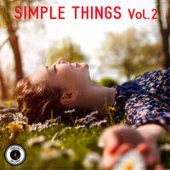 SIMPLE THINGS Vol. 2