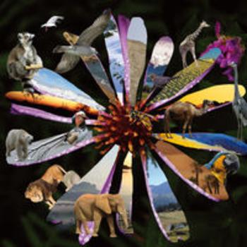 DOCUTRAX 1 - Natural World