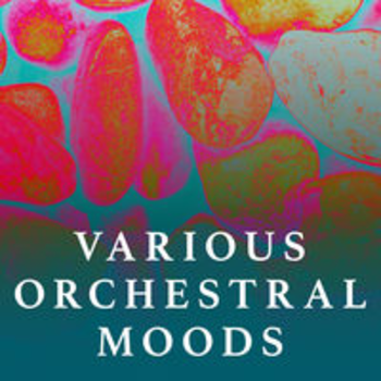 VARIOUS ORCHESTRAL MOODS