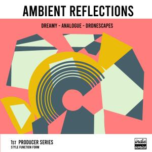 Ambient Reflections