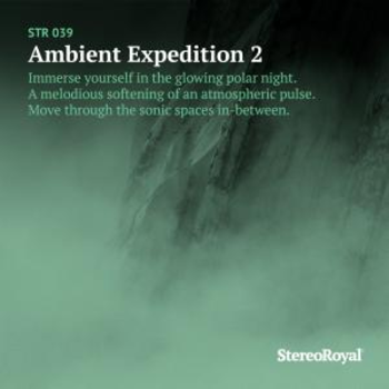 Ambient Expedition 2