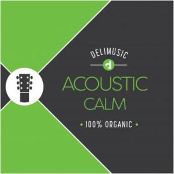 Acoustic Calming Moments