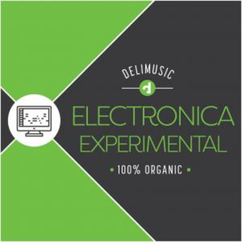 Electronica Experimental