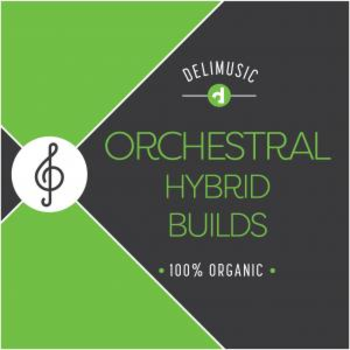 Orchestral Hybrid Builds
