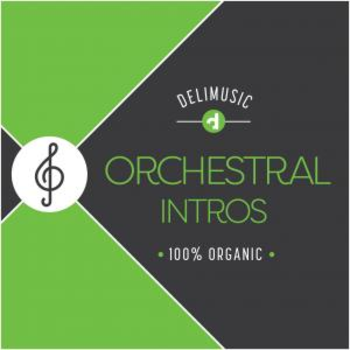 Orchestral Intros