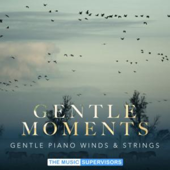 Gentle Moments (Gentle Piano, Winds and Strings)
