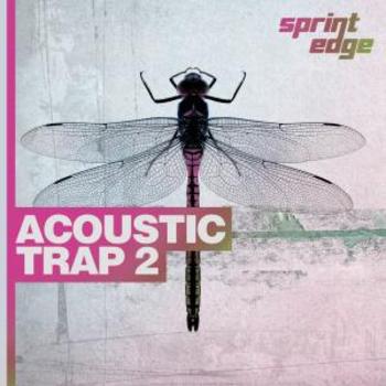 Acoustic Trap 2