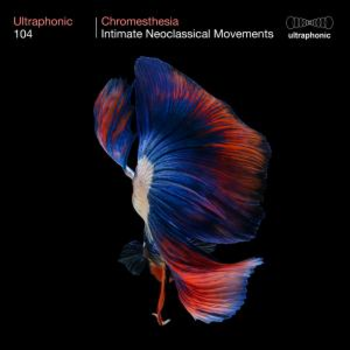 Chromesthesia