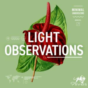 Light Observations