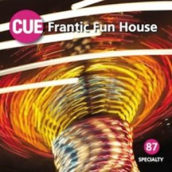 Frantic Fun House