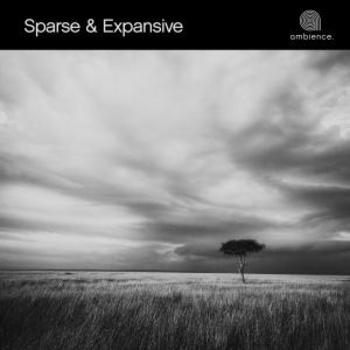 Sparse & Expansive