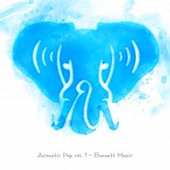 Acoustic Pop vol. 1