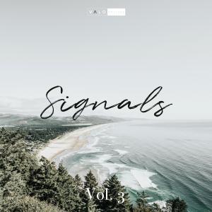 Signals Vol. 3