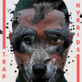 SCDV 1014 - TRAP HYBRIDS