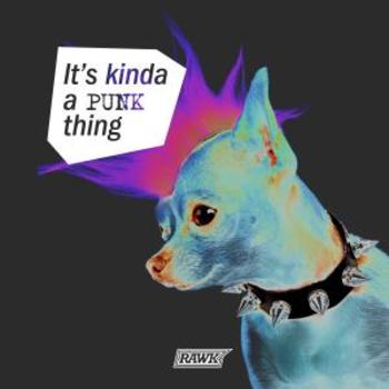 It's Kinda a Punk Thing