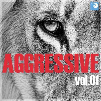 Aggressive Vol. 01