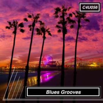 Blues Grooves