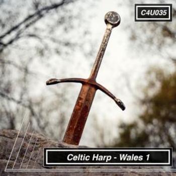 Celtic Harp Wales 1