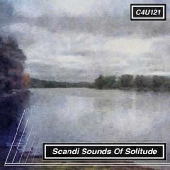 Scandi Sounds Of Solitude