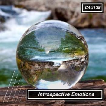 Introspective Emotions