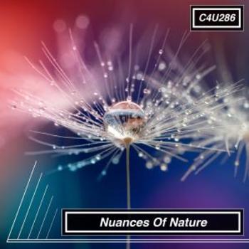 Nuances Of Nature