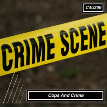 Cops And Crime