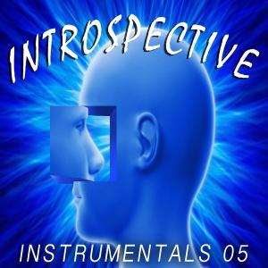 - Introspective 05