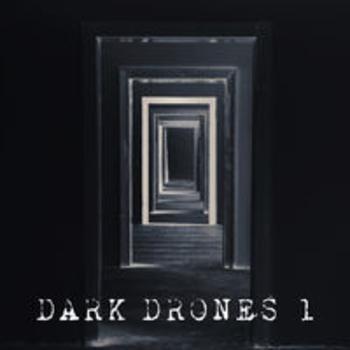 AFRO 261 - DARK DRONES VOL 1
